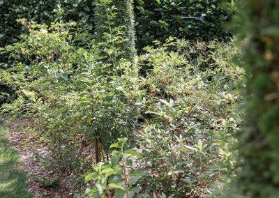 efh_badhall3_grüne-pflanzen-moderner-mix_1280x820