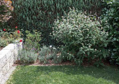 efh_gruenburg_gartenansicht-mit-Pflanzen_1280x820